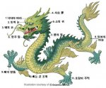 12jan_dragon.jpg